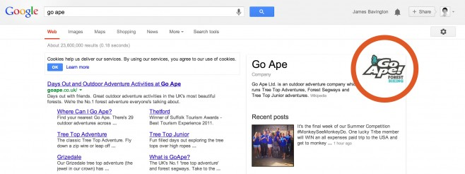 Go Ape appearing in the SERPS