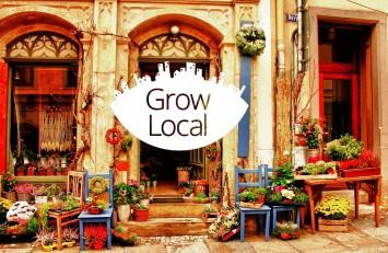 Google Partners Grow Local