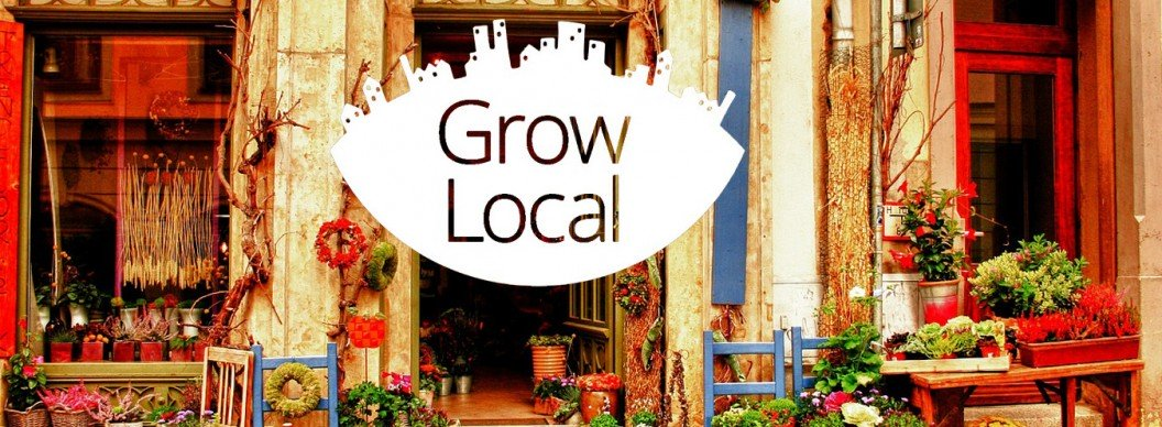 Google Partners Grow Local